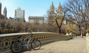 Central-park-march Bike Yorkville
