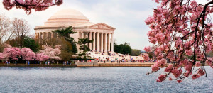 Washington-DC-Memorial-960-x-420